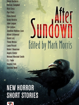 After-Sundown-Cover-Image